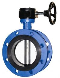 Flange Type Gear Operated Concentric Wafer Butterfly Valve- D341X