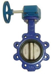 Gear Operated Concentric Lug Wafer Butterfly Valve  D37L1X